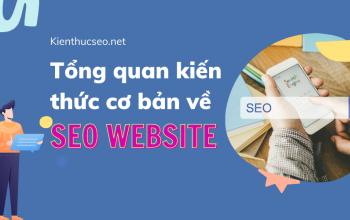 Tổng quan những kiến thức cơ bản về làm SEO website
